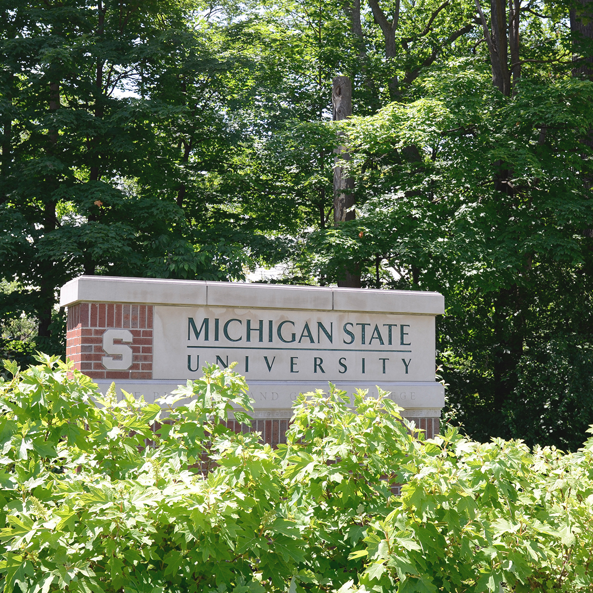 MSU Brick Welcome Sign, Wall