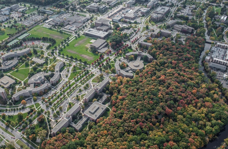 aerial view of msu campus