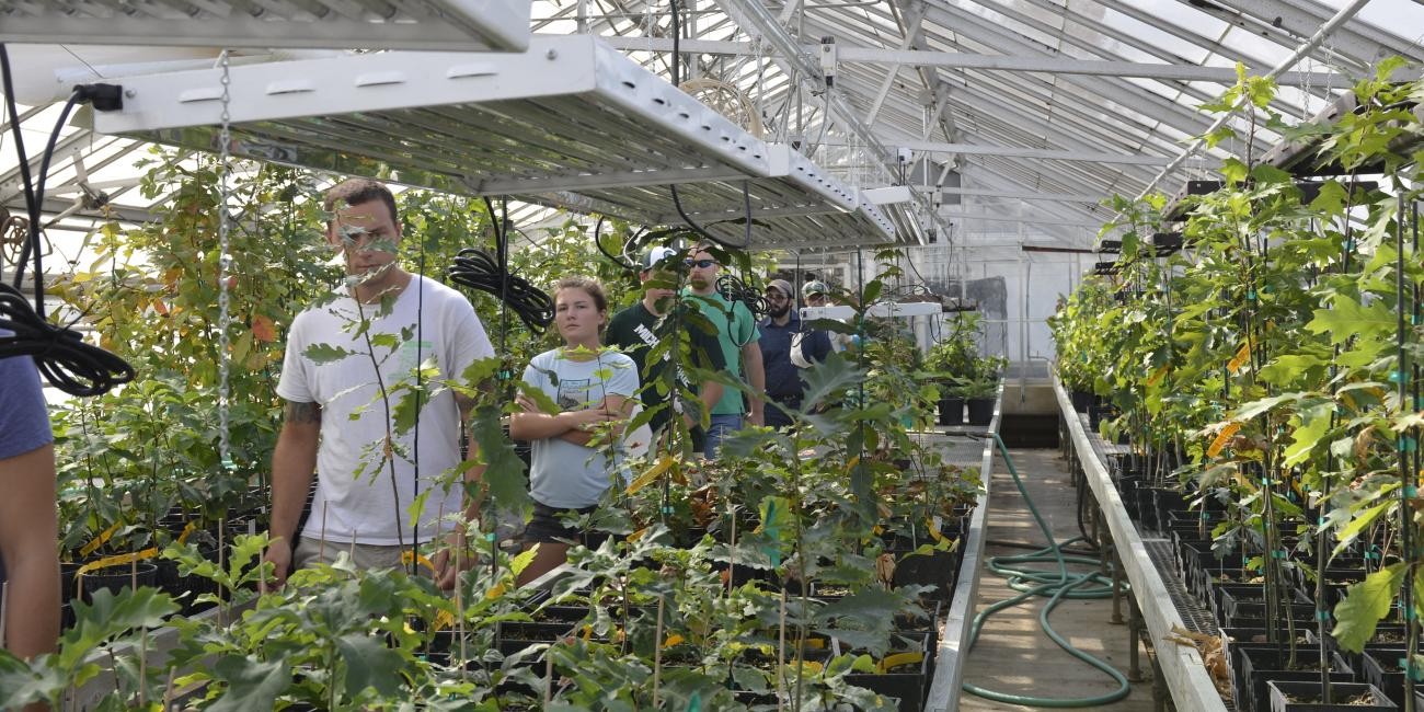 Beaumont Nursery transforms to classroom | Infrastructure